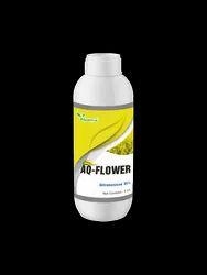 AQ-Flower