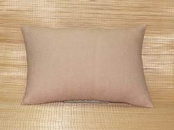 Couch Cushion