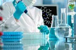 Scientific Research Service