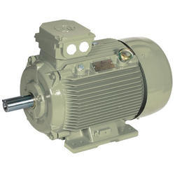 Crompton Greaves Induction Motor