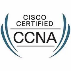 CCNA Network Training Service
