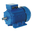 Dual Speed Electric Motor