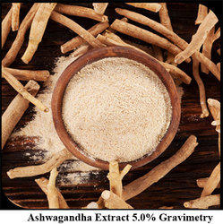 Ashwagandha Extract 5.0% Gravimetry