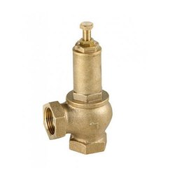 Ordinary Lift Safety Valve