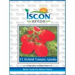Iscon F1 Hybrid Tomato Ajooba Seeds, Packaging Type: Packet, Packaging Size: 500g
