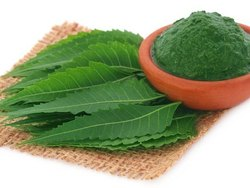 Neem Face Pack Powder