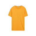 Mens Half Sleeves T-Shirt