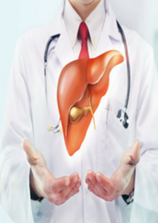 Liver Transplant Treatment