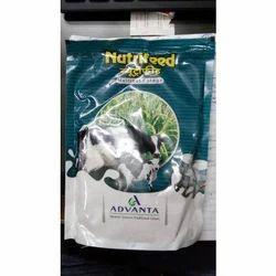 Advanta Nutrifeed Forage Seed