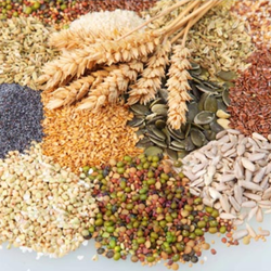 Raw Food Grains