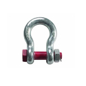 Bow Shackle ( Nut Bolt Type )