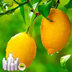 Lemon Oil Certified Organic