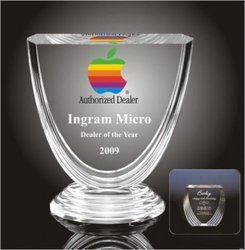 Designer Cup Acrylic Trophy