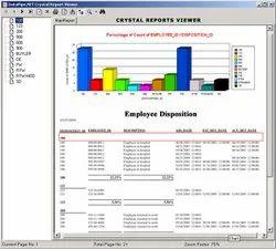 Beginner Offline Reporting Tools Service