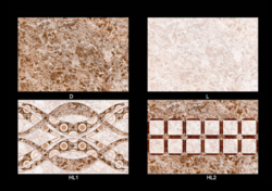 Ceramic Digital Concept Wall Tiles, Thickness: 5-10 mm, Size (In cm): 30 * 60