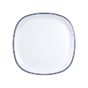 Sq. Miracle Plate Plastic D- 47 Blue