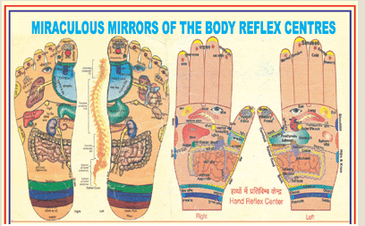 Acupressure Courses in Sector 15a, Faridabad | ID: 18916632312