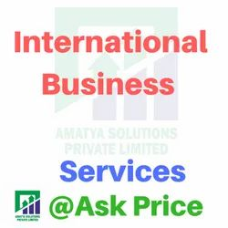 International Business Consultant