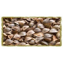 Kuttu Buckwheat Seeds, Packaging Size: 50kg