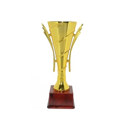 Brown Champion Trophy