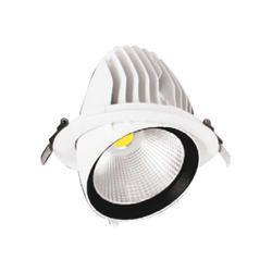 40W LED Zoom Light