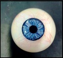 Cosmetic Shell Artificial Eye