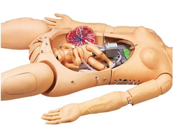 Advanced Delivery and Maternal Simulator