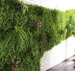 Vertical Artificial Garden
