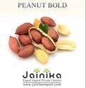Peanut Bold