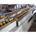 Fruit Grader Machine