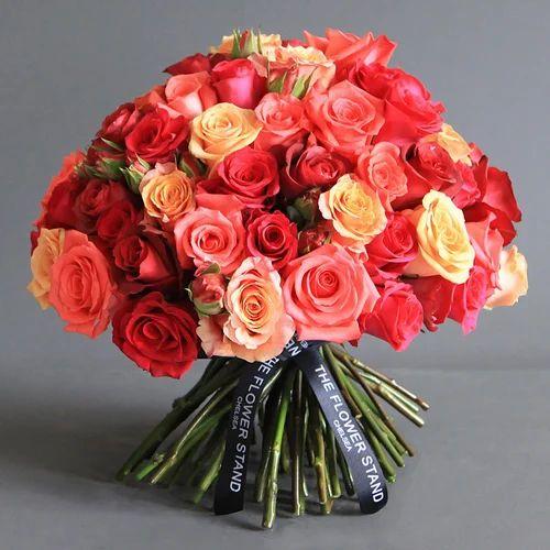 பிறந்த நாள் வாழ்த்துகள்.(ஆதிரா) Anthurium-flowers-500x500