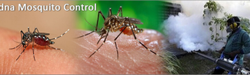 Dna Mosquito Pest Control Service