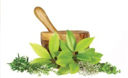 Herbal PCD Pharma Franchise In Jharkhand