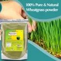 Wheatgrass Powder - Organic Green Food Powder Supplement