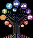 Social Media Optimization Service, In Pan India
