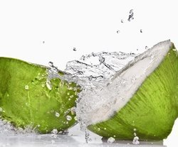 Tender Coconut Water at Best Price in India