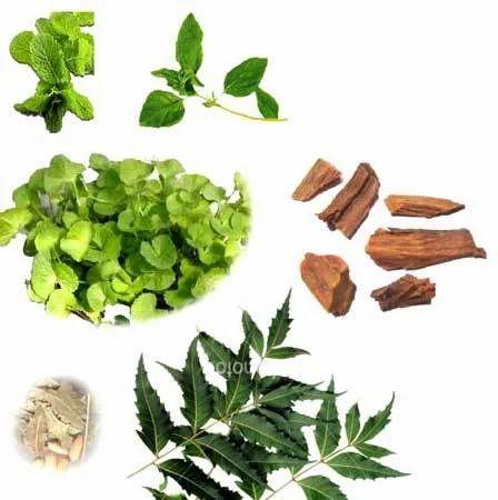 Herbal Extracts (Dry / Liquid)