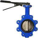 Manual Cast Iron Gear Operated Butterfly Valves