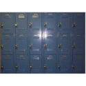 50 Locker Unit