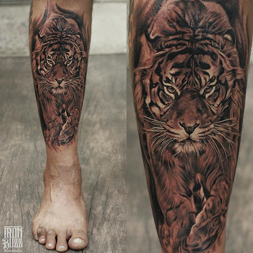 Tiger Lion Tattoos
