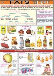 Fats Food & Nutrition Chart