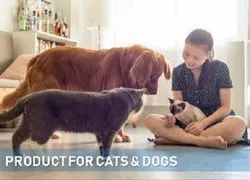 Cat & Dog Products