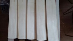Wooden English Willow Cricket Bat