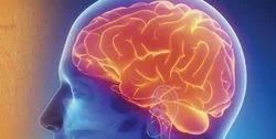 Neurology Service