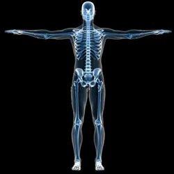 Full Body Health Check Up