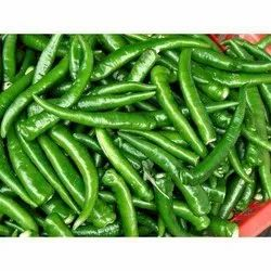 A Grade Organic Chillies, Rajasthan, Packaging Size: 10 Kg