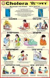 Cholera For Prevent Diseases Chart