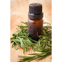Essential Rosemary Oil