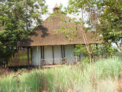 Thatched Roof Structure