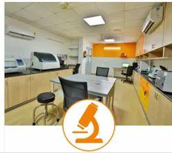 Pathology Treatment Service